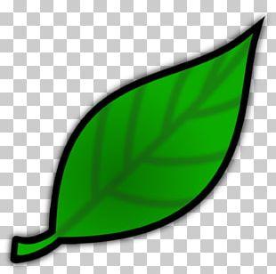 Non-profit Organisation Fundraising Leaf Charitable Organization PNG