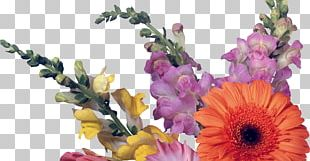 Floral Design Desktop Cut Flowers 1080p PNG
