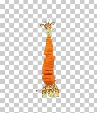 Northern Giraffe Art Illustration PNG