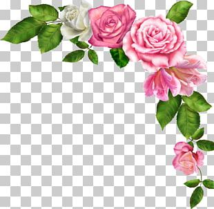Borders And Frames Pink Flowers PNG