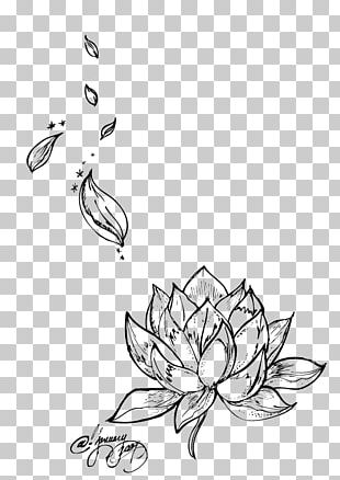 Egyptian Lotus Nelumbo Nucifera Tattoo Flower Drawing PNG