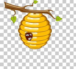 Honey Bee Beehive PNG