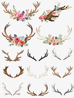 Hand-painted Flowers Antlers PNG