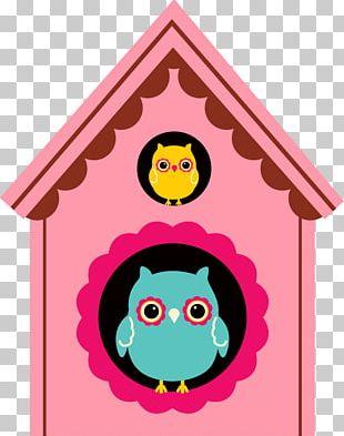 Little Owl Bird PNG