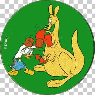 Boxing Kangaroo Donald Duck Macropodidae PNG