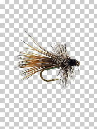 Apple Elk Hair Caddis Caddisflies Artificial Fly Dry Fly Fishing PNG