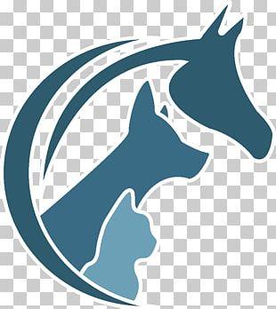 Pine City Veterinary Clinic LLC Dog Veterinarian Physician PNG