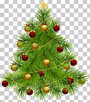 Christmas Tree New Year Tree PNG