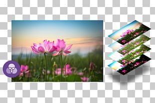 Desktop Display Resolution High-definition Television Resolution 1080p PNG