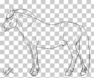 Fjord Horse Line Art Drawing Mule PNG