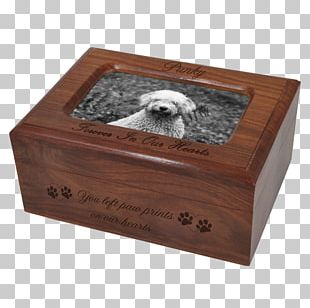 Urn English Cocker Spaniel Jewellery Gold-filled Jewelry PNG
