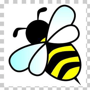 Bee Hornet PNG
