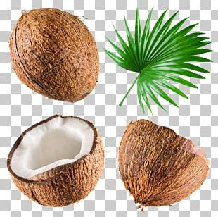 Coconut Milk Coconut Water Stock Photography PNG