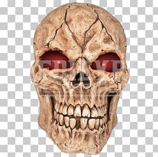 Skull Human Skeleton Haunted House Eye PNG