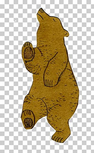 Bear Giant Panda Tenor Gfycat PNG