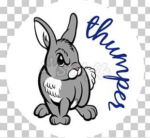 Domestic Rabbit Car Hare /m/02csf PNG