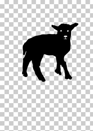 Merino Bighorn Sheep Dog Breed Lamb And Mutton PNG