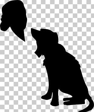 Veterinarian Dog Paraveterinary Worker PNG