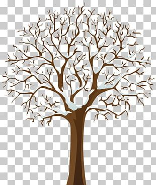 Tree Winter PNG