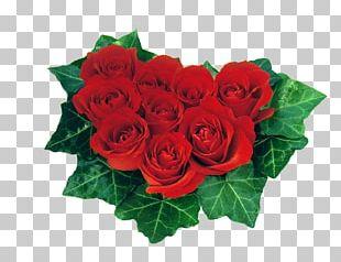 Heart Valentine's Day Rose Red Desktop PNG