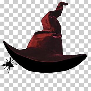 Witch Hat Witchcraft Costume Косово Поле (Радиоверсия) PNG