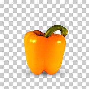 Chili Pepper Yellow Pepper Bell Pepper Vegetable Vegetarian Cuisine PNG