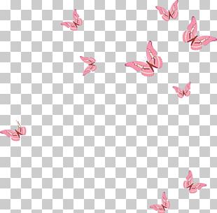 Butterfly Euclidean Pink PNG