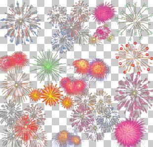 Dahlia Floral Design Chrysanthemum Petal Pattern PNG