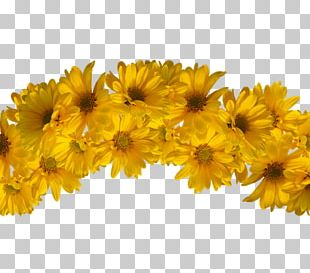 Yellow Wreath Flower Crown Headpiece PNG