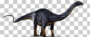 Apatosaurus Brachiosaurus Diplodocus Tyrannosaurus Jurassic Park: The Game PNG