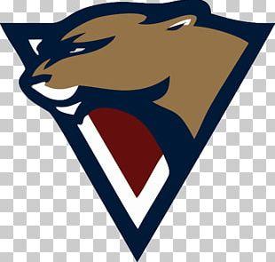 Florida Panthers Jersey Carolina Panthers Logo PNG