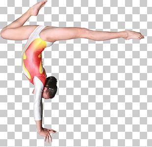 Physical Fitness Gymnastics Balance Beam Strength Training Exercise PNG