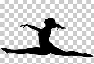 Artistic Gymnastics Sport Gymnastics Rings PNG