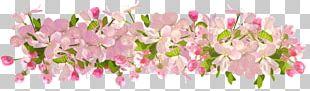 Flower Floral Design Decorative Arts PNG