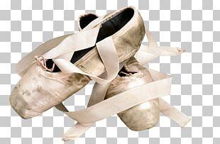 Ballet Shoe Slipper Pointe Shoe PNG