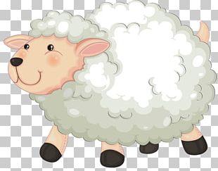 Sheep Goat Drawing PNG