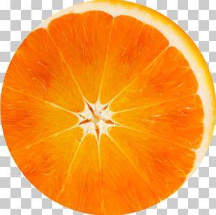 Orange Flower Water Vegetarian Cuisine Ingredient Annemarie Börlind Orange Blossom Energizer Serum PNG