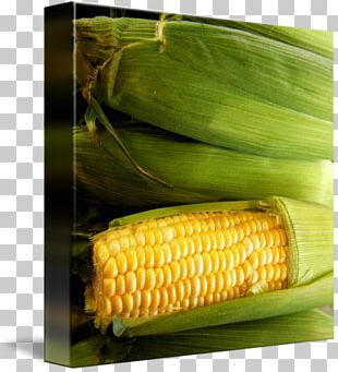 Corn On The Cob Sweet Corn Maize Natural Foods PNG