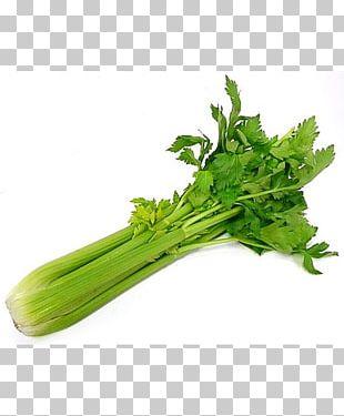 Organic Food Vegetarian Cuisine Celery Vegetable PNG