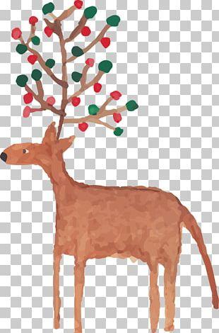 Reindeer Christmas Watercolor Painting PNG