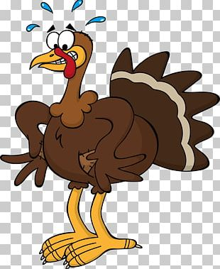 Black Turkey Thanksgiving Cartoon PNG