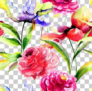 Watercolor Painting Flower Peony PNG