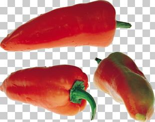 Portable Network Graphics Chili Pepper Jalapeño Computer File PNG