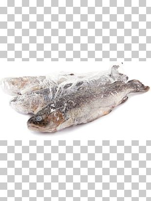 Rainbow Trout Dried And Salted Cod Oily Fish Salmon PNG