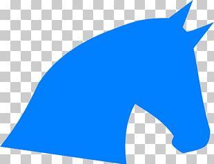 Arabian Horse Fjord Horse Horse Head Mask PNG