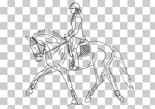 Free Horse Coloring Pages | 217x310