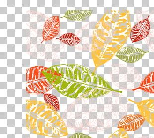 Leaf Euclidean Autumn PNG