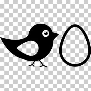 Bird Nest Silhouette Nest Box PNG