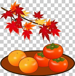 Tomato Japanese Persimmon Autumn Leaf Color Tannin PNG