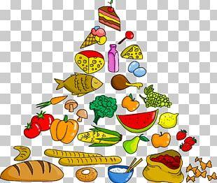 Food Pyramid Food Group PNG